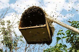 Роевни для пчел своими руками