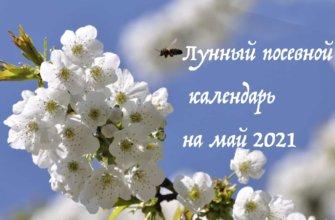 Лунный Календарь Садовода и Огородника на Май 2021 года