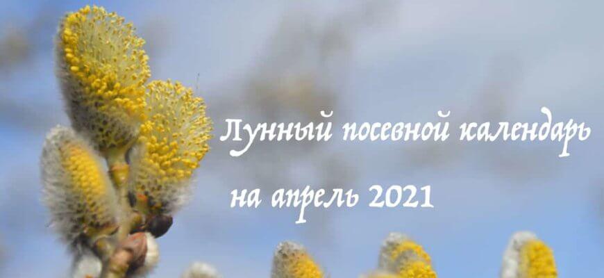 Лунный календарь садовода и огородника на апрель 2021 года