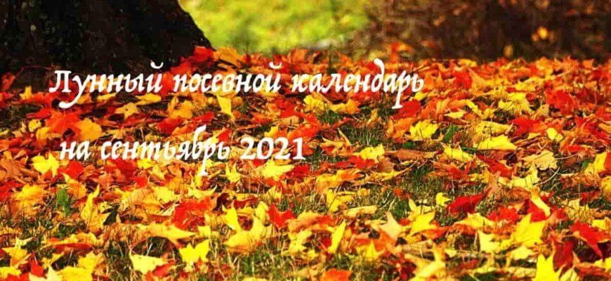 Лунный календарь садовода и огородника на сентябрь 2021 года