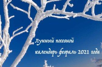 Лунный посевной календарь февраль 2021 года