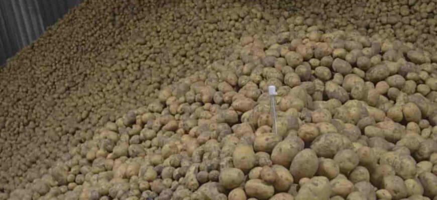 При какой температуре хранится картошка