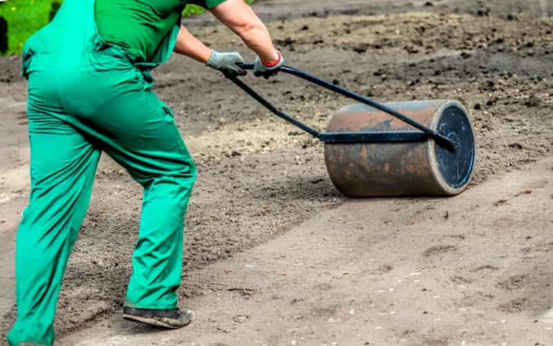 Технология посева газона